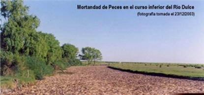 Minera La Alumbrera denunciada por contaminar en Catamarca y también a la cuenca del Salí-Dulce