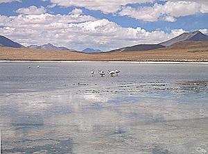 Inician labores de perforación en reserva de litio boliviana
