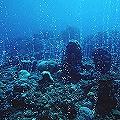 A la pesca de los minerales marinos