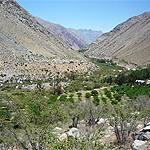 Valle de El Elqui