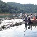 Minera demandada por derrumbe de dique de colas