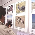 Daños ambientales mineros en exposición de fotografías