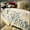 Caso Caimanes por Minera Pelambres fue denunciado ante la ONU