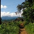 Minería amenaza bosques originarios de Filipinas