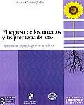 Chubut y su patrimonio arqueológico en debate