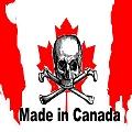Canadá: hogar de capitales mineros