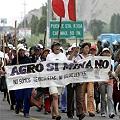 Más de seis mil observaciones a Proyecto Minero Tía María