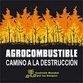 Informe científico: agrocombustibles no mitigan el cambio climático, lo aumentan