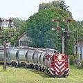 Construirían ramal ferroviario para el saqueo de potasio
