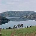 Comunidades del territorio Lleulleuche rechazan proyecto minero