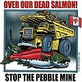 EEUU: fuerte oposición de pescadores proyecto minero