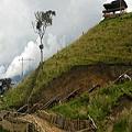 Continúa proceso judicial del Proyecto minero La Colosa