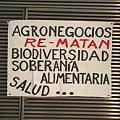 Argentina, soja y dólares bajo agua