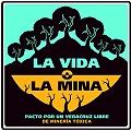 Organizaciones sociales exigen cancelar proyecto minero en Veracruz