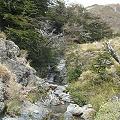 Caminata hacia las vertientes de agua pura de Esquel