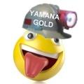 Yamana Gold pidió disculpas por cambiar el nombre al cordón Esquel