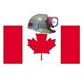 Sindicato canadiense reitera tratamiento de ley para control a mineras