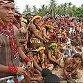 Brasil podría introducir minería en reservas indígenas