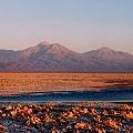 Exigen explicación a diputados por sendas omisiones en informe sobre la desertificación en Chile
