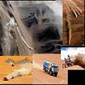 Rally Dakar: Gobierno de Ecuador rechazó que se realice en ese país