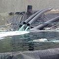 Piden monitorear zonas afectadas por contaminación minera