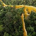 La naturaleza de la Guayana vale más que el oro