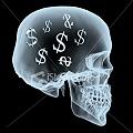Las pesadillas mineras alrededor del dinero