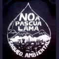 Pascua Lama, minería transfronteriza, crisis, y resistencia de los pueblos