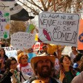 Amplio rechazo y colorida manifestación contra Proyecto Andina 244