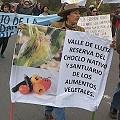 Por qué se rechaza el proyecto minero Los Pumas en Arica
