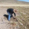 La agricultura y el cambio climático en zonas mineras de Bolivia