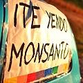 Ordenan no autorizar la puesta en marcha de planta de Monsanto sin estudio de impacto ambiental
