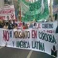 Gobierno de Córdoba autorizó ilegalmente a Monsanto