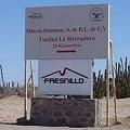 Suspende operaciones una mina de oro en Sonora