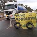 Premios Nobel Alternativos piden audiencia al Gobernador para resolver conflicto con Monsanto