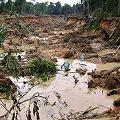 """Piden a presidente Humala declarar """"Estado de Emergencia Ambiental"""" en Madre de Dios"""