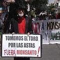Manifestaron para que Ministerio de Ambiente derogue permiso a Monsanto