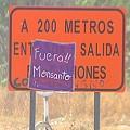 Rechazo oficial al estudio de impacto ambiental de la planta de Monsanto