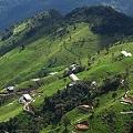 Suspenden actividades de AngloGold Ashanti en la vereda el Diamante de Cajamarca