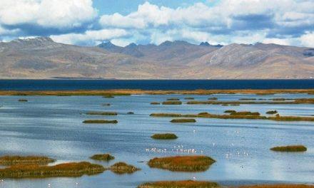 Lago Chinchaycocha contaminado por culpa de mineras
