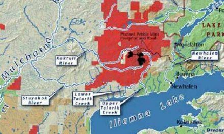 Autoridades podrían bloquear proyecto de enorme mina en Alaska