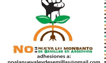Campaña NO a la nueva ley «Monsanto» de semillas en Argentina