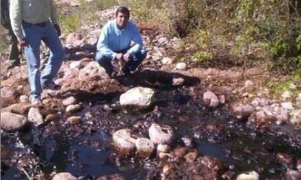 Solicitan cese de actividades petroleras en el Parque Nacional Calilegua por la grave situación ambiental