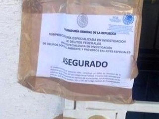 La Procuraduría General y Profepa allanaron oficinas de la mina del Grupo México