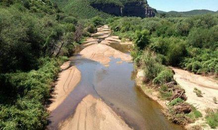 """La """"limpieza"""" del derrame en el río Sonora, sólo pantalla"""
