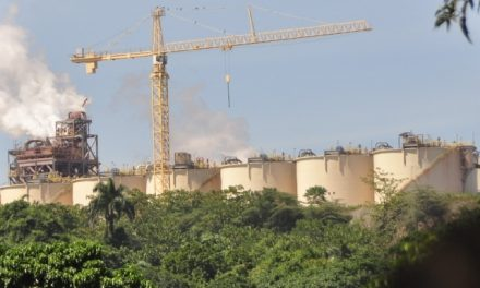 Contaminación con cianuro y metales pesados afecta animales y vegetales en seis aldeas Cotuí