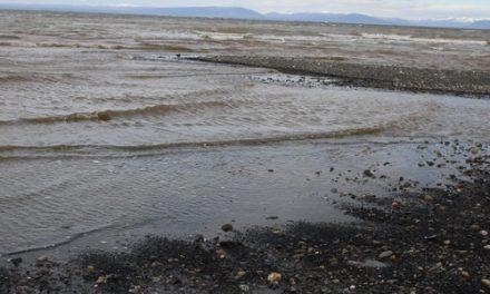 Presentan denuncia ambiental conta Mina Invierno en Isla Riesco