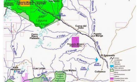 ¿Por qué rechazar la Declaraciòn de Impacto Ambiental del proyecto Hierro Indio, aprobada por el gobierno de Mendoza?