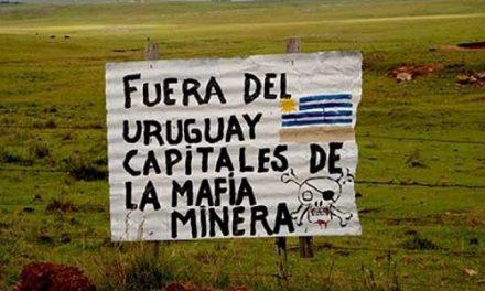 Ministerio de Industria deberá entregar información a ambientalistas sobre proyecto minero Aratirí