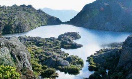 Minambiente anuncia zonas protegidas de minería en Páramo de Santurbán